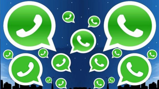 WhatsApp-gif-01
