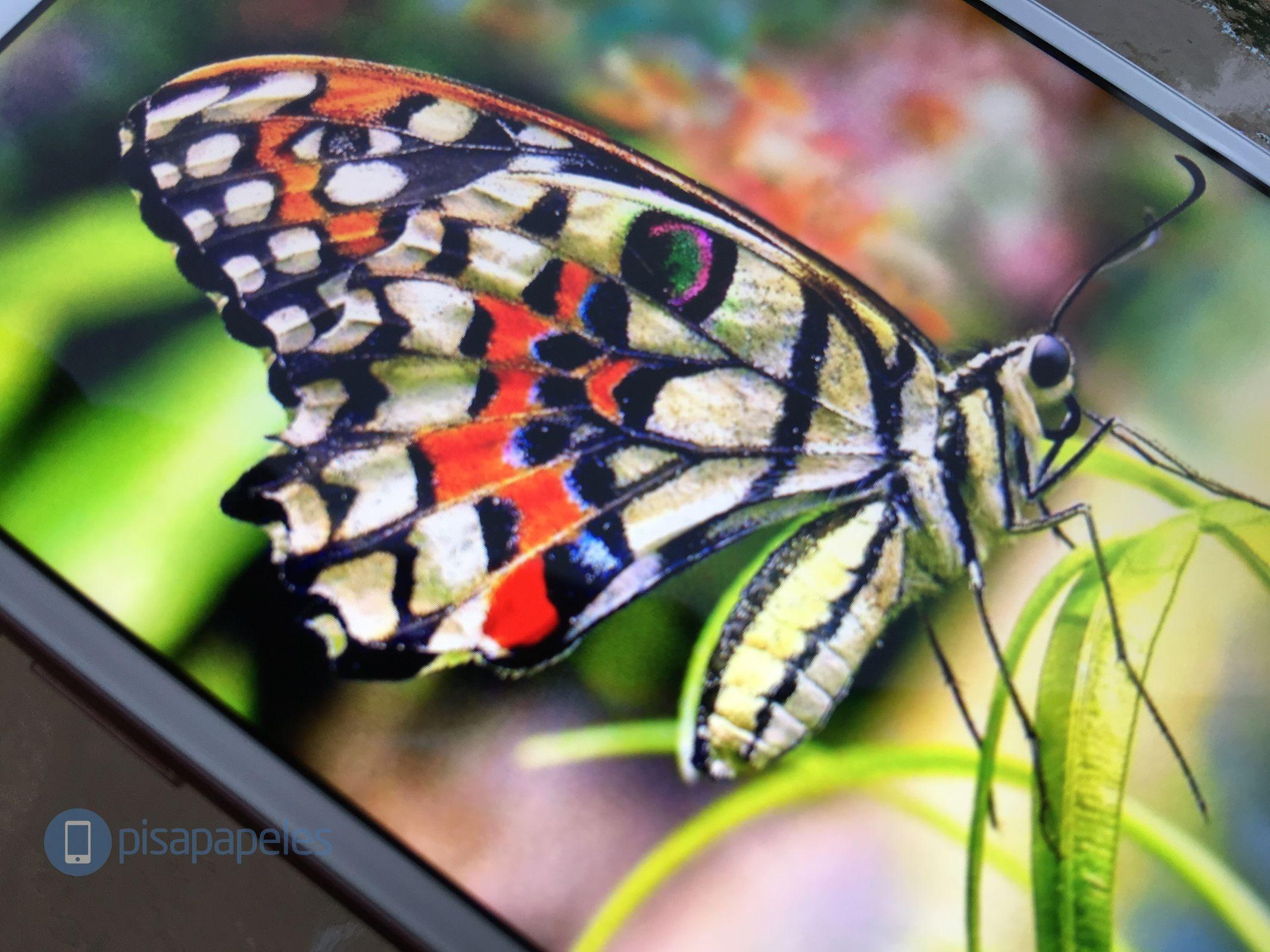 apple-iphone-7-pisapapeles-net_1